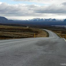 The road: empty, higher than the landscape and borded with yellow posts
