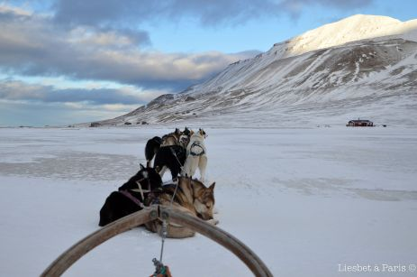 My sled and the dogs taking a rest