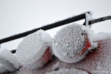 The snowcat : detail