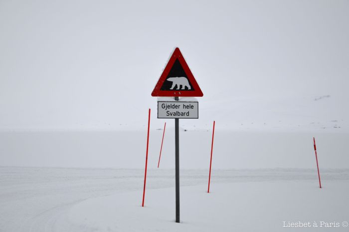 One of the most photographed northern traffic signs